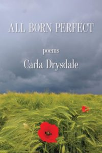 All Born Perfect Cover